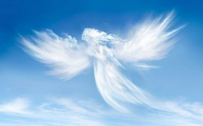 Angel Investing: What I Look For in Startups